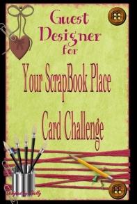 YSBP-Guest Designer 3