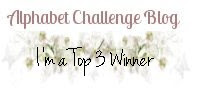Top 3 Winner alphabet chall blog