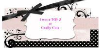 crafty-catz-top-3-badge