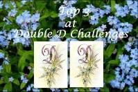 Double D Challenge Top 3