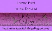 CRAFT Challenge Top3, 1
