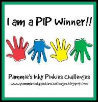 PIP Winner Badge 1